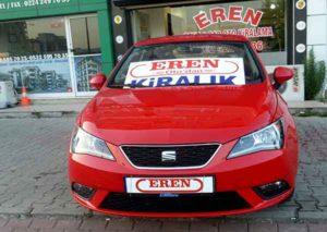 Seat-Ibiza-4.jpg